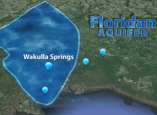 Environmental Crossroads for Wakulla Springs